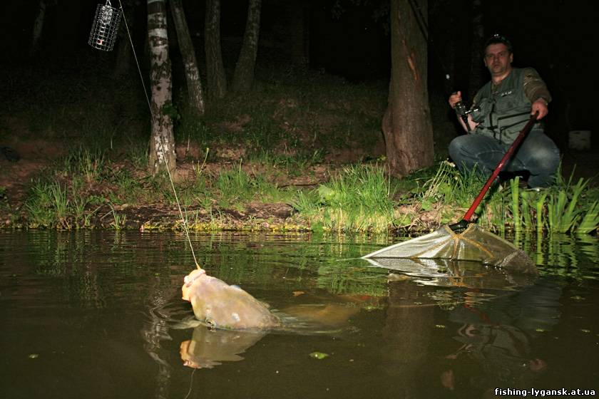 клюет ли рыба при давлении 770